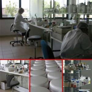 laboratorio_