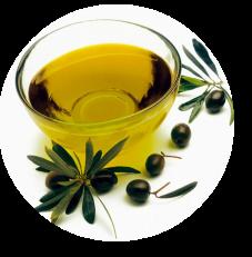 degustazione-olio-oliva