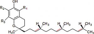 Vitamina-E-300x110