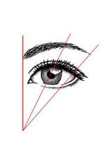 depilazione-sopracciglia-linee-guida-370594_w155